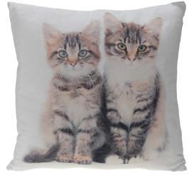 Poduszka Cats 45x45 cm- wzór 1